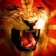 Како Македонија го добила своето име?