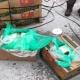 Затворениците во Тексас за малку ќе добиеле банани со кокаин