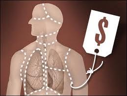 organ-trafficking
