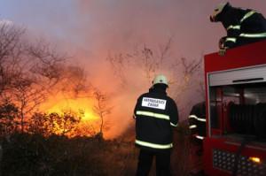 Požar-u-Baričevićima-Foto-PIXSELL