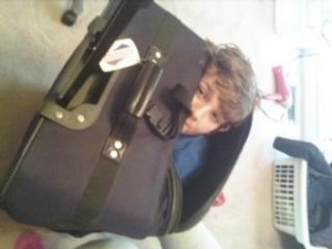jimmy-in-suitcase