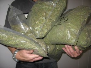 08012013130516_marihuana kesi