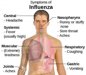 Flu-pic