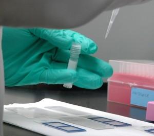 Laboratorijski-testovi