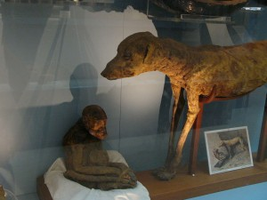 Monkey_and_dog_mummies,_Cairo_Egyptian_Museum_01