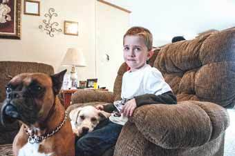 boy-saved-by-dogs