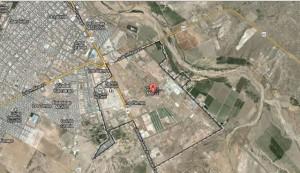location of pig alien 2