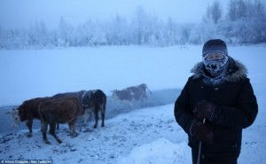 najladno selo4
