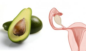 04-Avocados-UterusFoods-That-Look-Like-Body-Parts-1-628x371