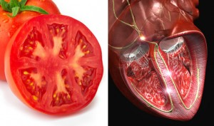 07-Tomato-HeartFoods-That-Look-Like-Body-Parts-1
