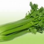 16-celer