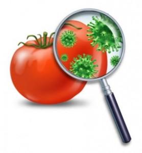 Prevent_food_poisoning_512411998
