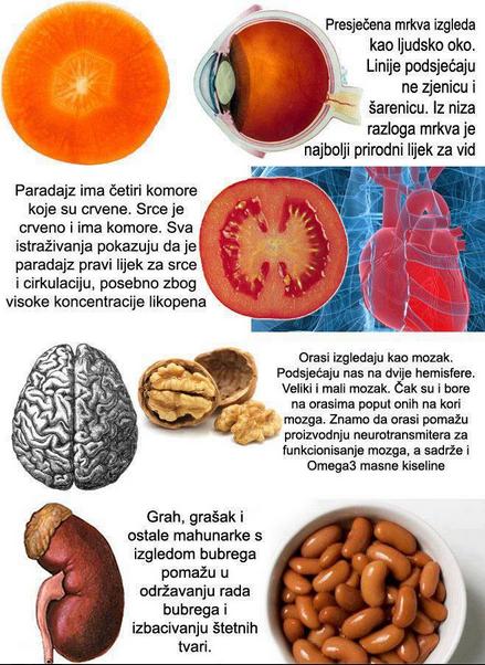 organi i zelencuk