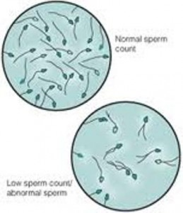 sperm phone