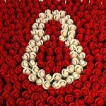 Денот на силната жена – Среќен 8 март