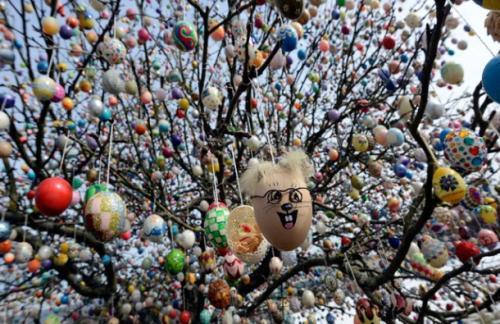 jajca na drvo
