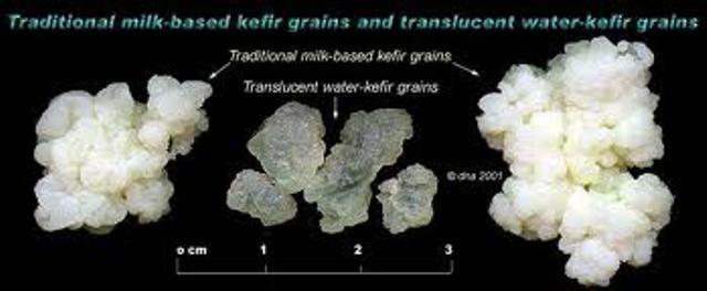 kefir granes