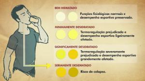 cor-da-urina-significados[5]