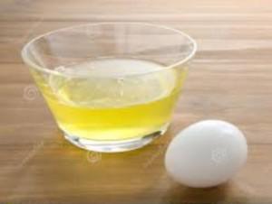 jajce belka