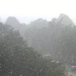 Ако грми и врне на Ѓурѓовден, има само едно значење