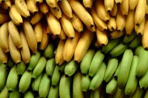Banana-Bioplastic-300x200