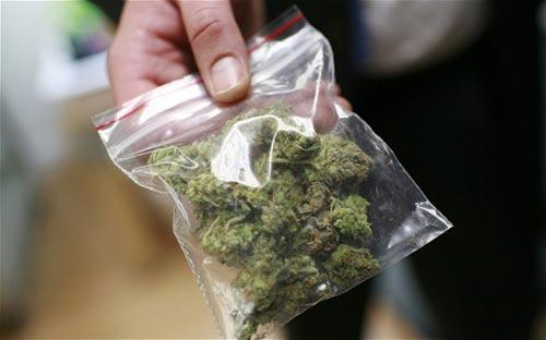 marijuana-500