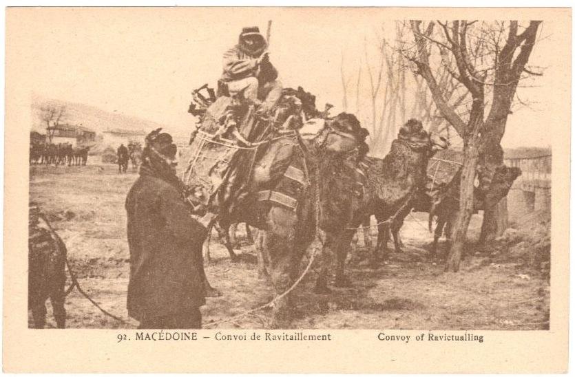 kamili2