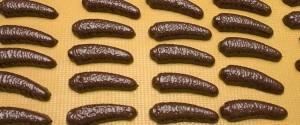 hitkujna-krem-banani