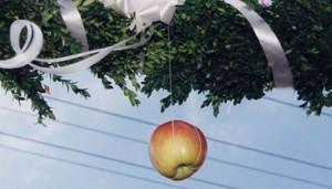 gadjanje-jabuke