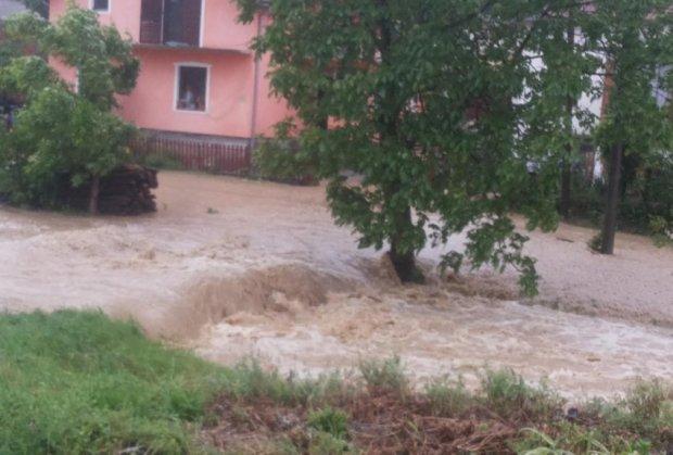 poplave-na-umci-foto-citaoc-kurira-1400087949-496383