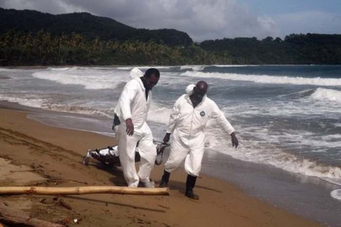 Forensic workers carry one of the bodies of an elderly German couple, after they were found murdered on a beach near their home in the island of Tobago