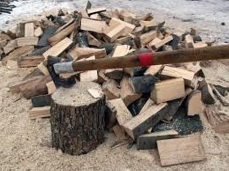 sekira drva