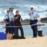 Спречен терористички напад во Сиднеј, уапсени три лица