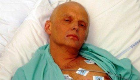 296255_litvinenko-ap_f
