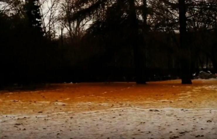 sneg portokalov