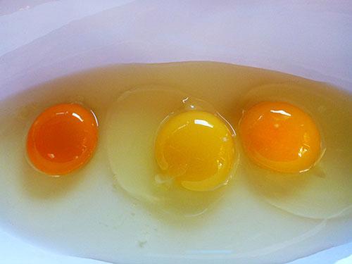 jajce 44