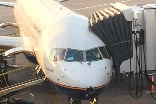 avion grom