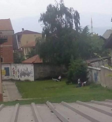 фото - Убавинаиздравје.мк