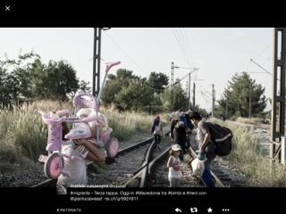 migrant333