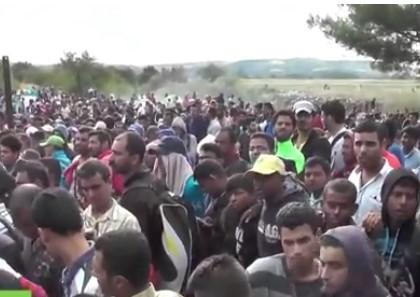 migranti33