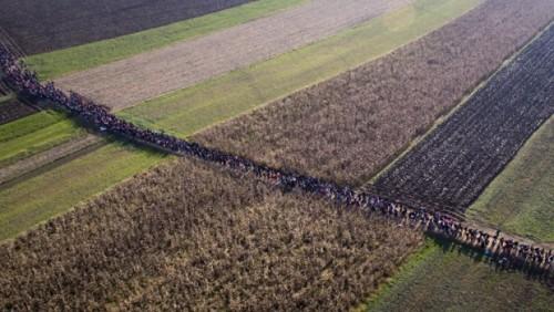 Migranti-izbeglice-10-620x350_thumb_medium500_282