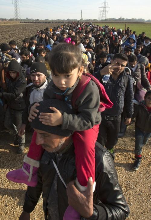 Migranti-izbeglice-15_thumb_medium500_730