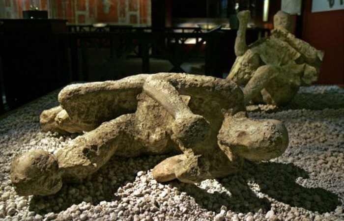 pompeja-vulkan-zrtvi-vezuv-05