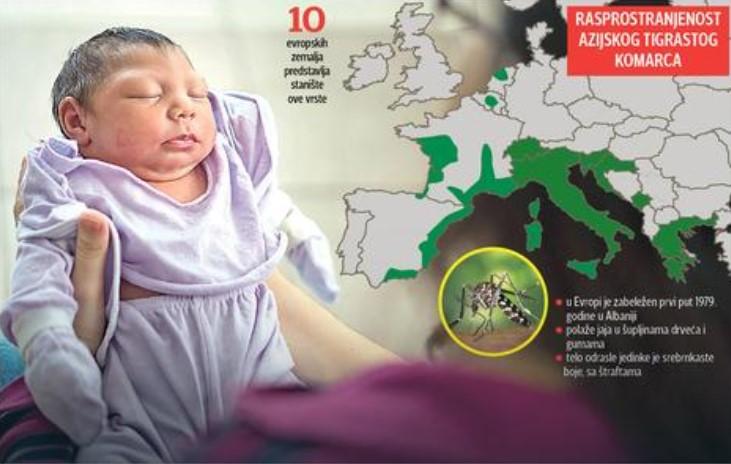 zika virus evropa
