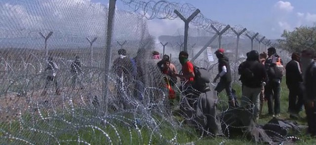 migranti-zica-640x294
