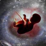 Се бара жена волонтерка да се породи во Вселената