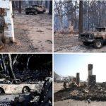 Во пожарите во Калифорнија најмалку 42 жртви