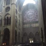 Има осомничен за големиот пожар во катедралата Нотр Дам